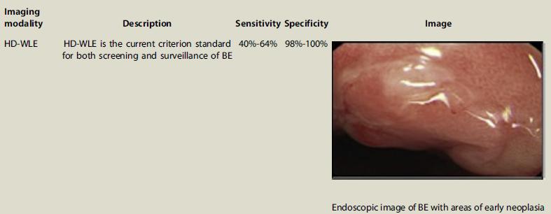 Endoscopia alta definición
