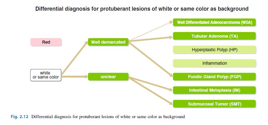Lesiones Protruidas Blancas